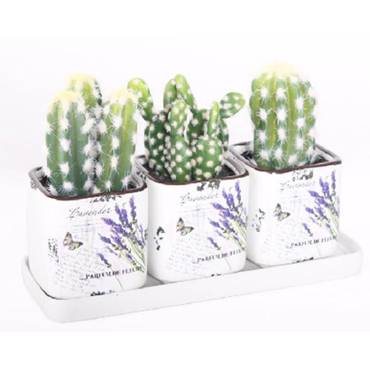 Maceta set 3 cerámica cactus artificial (25x9x17 cm)
