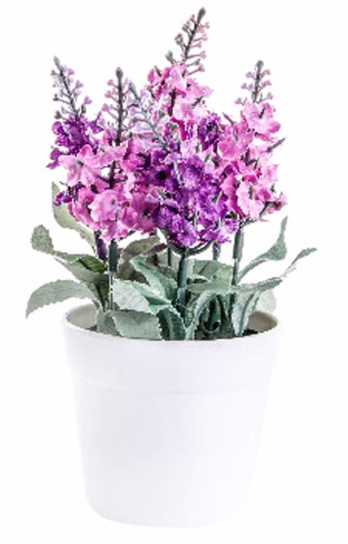 Potted lavender pp pvc white (8x18cm)