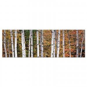 Cuadro fotoimpresión sobre lienzo, modelo bosque otoño