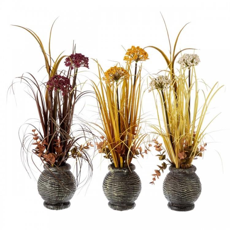 Planta en 3 colores