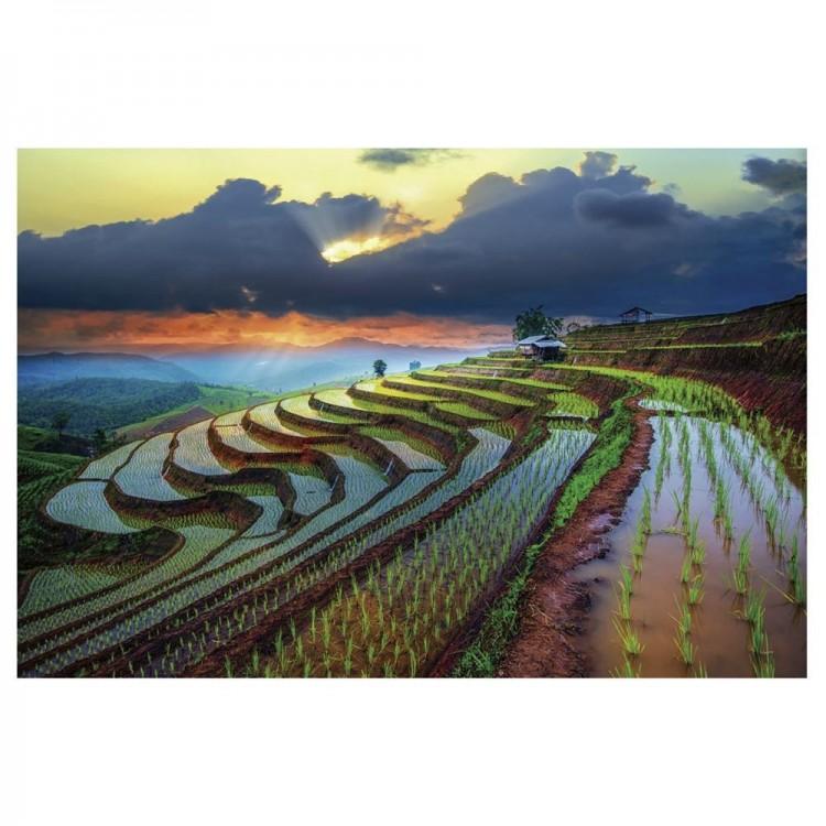 Cuadro decorativo multicolor de un arrozal Hogar y mas