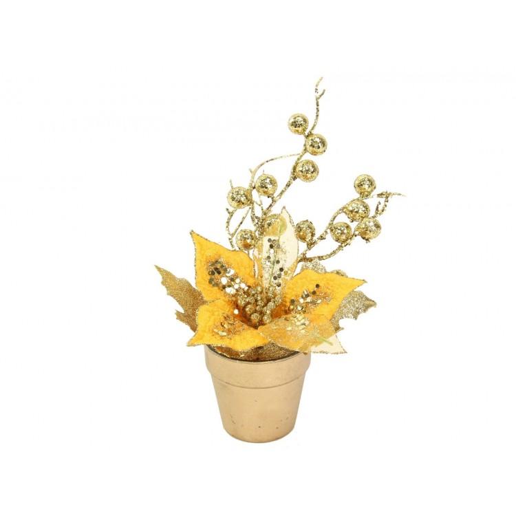 Flor Navidad Ponsettia