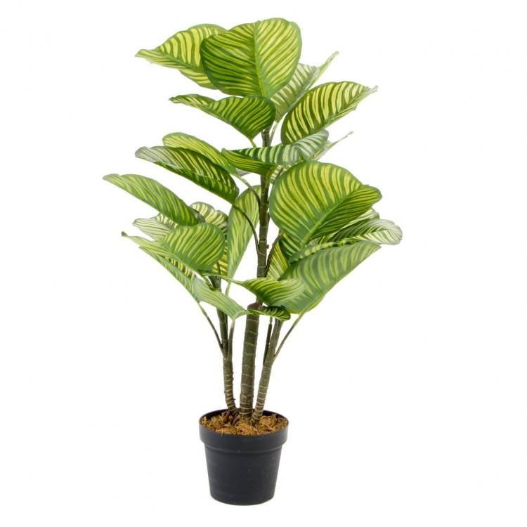 Planta calathea artificial con maceta. Muy realista y con detalles. . Hogar y más.