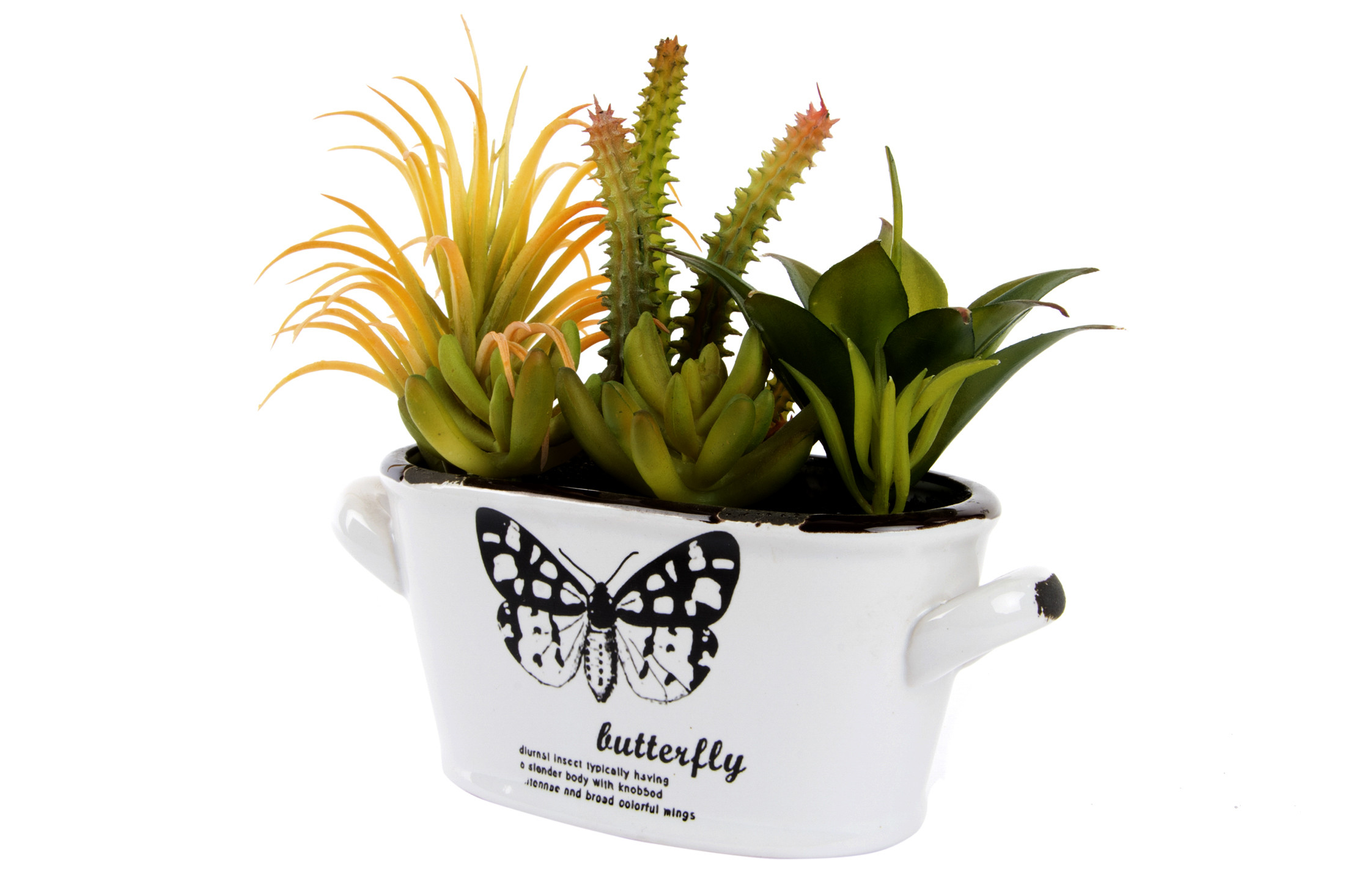 Home and more - Ceramic Pot and flower Pvc