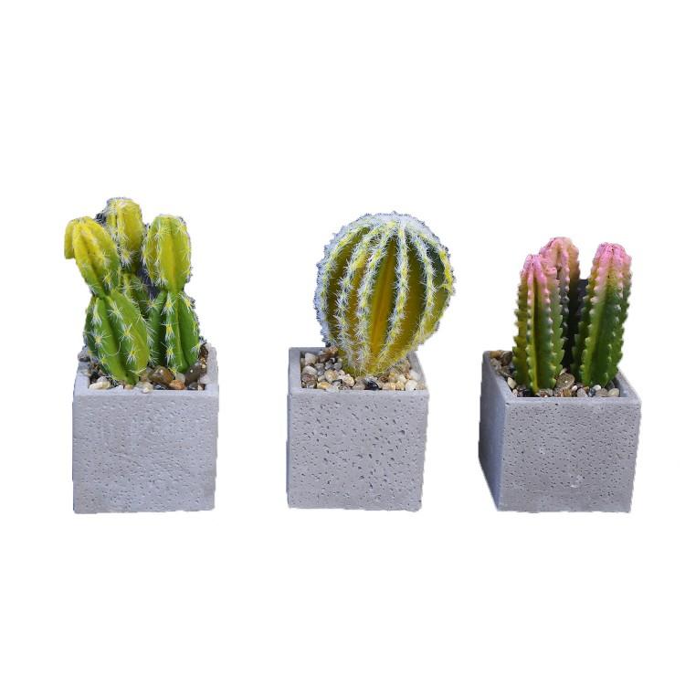 Planta de Cactus artificial hiperrealista con maceta de piedra natural en Set de 2 Estilo Natural. - Hogar y más
