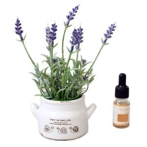 Air freshener oil with flower pot decorative for apply - Design-Simple-Life - Home and more