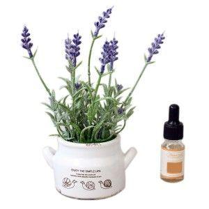 Ambientador en aceite con maceta decorativa para aplicarlo - Diseño Simple Life - Hogar y más