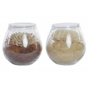 Air freshener Flower Dry White, in Glass container with aroma of Alpine. Floral design, with Natural style - Home and More