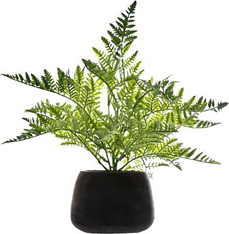 Planta Artificial con Maceta Negra Cemento, Helecho Hierba de Interior.