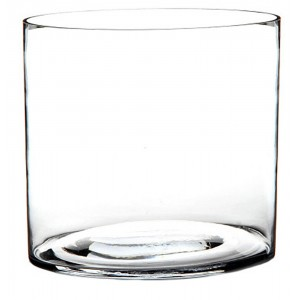 Jarrón Cilindrico de Cristal Transparente, Estilo Moderno. Perfecto para colocar Flores 20X20X20 cm.-Hogarymas-